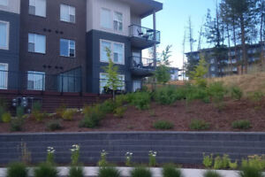 UBCO U-Two 3 Bedroom Condo Available September 1st!