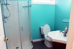 Bi-Level 2 room basement available for rent from May 01