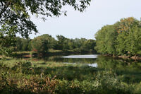 Waterfront Property and wood land in rural area