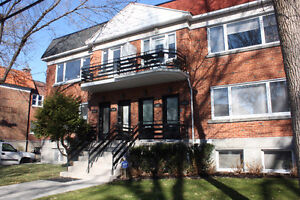 Renovated lower duplex with a bachelor 3 parking spot, etc....