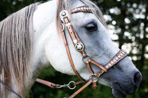 Martha Josey Barrel Saddle  & Double J Custom Bitless Bridle