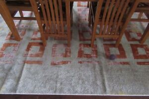 New, excellent area rug