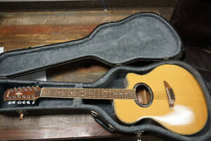 Electric Acoustic 12 String