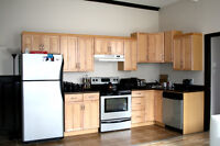 Beautiful One Bedroom Apartment Uptown