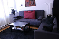 July & Aug Large downtown 1-bdrm apartment (hydro+internet inc)