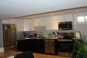 Completely Renovated 3 Bedroom Apartment- Available May1/18