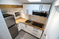 Newly Renovated 1 Bedroom 1 Bathroom Suite Available