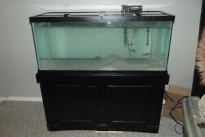 75 gallon aquarium complete