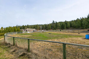 Equestrian Farm on 10+ Acres