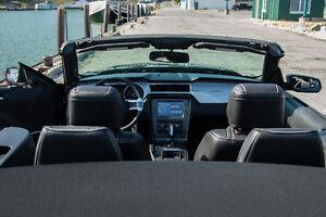 2014 Ford Mustang V6 Premium Convertible Windsor Region Ontario image 8