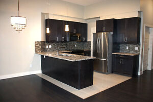 ALL NEW TOWNHOME STYLE CONDO IN WINDERMERE WITH INSUITE ELEVATOR
