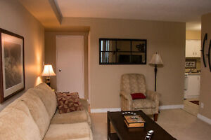 FURNISHED EXECUTIVE RIVERFRONT CONDO Sarnia Sarnia Area image 3