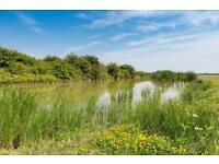 CHEAP FIRST CARAVAN, Steeple Bay, Southminster, Southend, Essex, Clacton, Kent