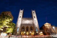 Sociable and bilingual tour guide for Montreal