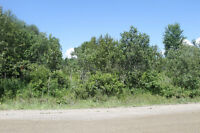 Your Custom Home awaits you on this Beautiful 5 Acre Lot