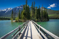Registered Dental Hygienist Needed - Jasper, Alberta