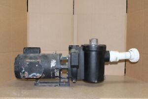 Gould 1-1/2 HP Hot tub or Pool pump  two speed