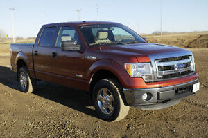 2014 Ford F-150 XLT Pickup Truck/Keyless Entry/4x4/Back Up Cam