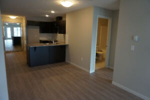 Unique Floor Plan (1 Bed + Den), Open Concept SOUTHWEST EDMONTON