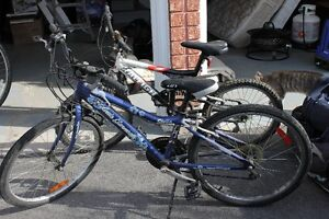 One kids bike for sale-Black Raleigh Brand