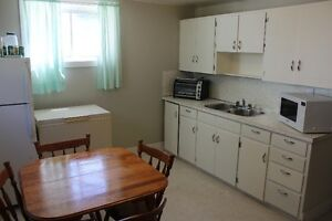 Renfrew Basement Suite for Rent