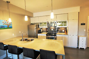 Whyte Ave! Like new PENTHOUSE 1100 sf Strathcona condo for sale!