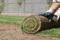 Sod Installation $0.85/SQ FT - Sodding, Free Quoutes