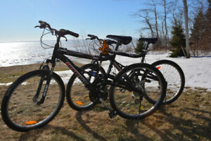 Raleigh Tora Mountain Bike