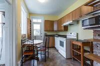 2 Big bedroom apartment heart of Plateau Mont-Royal