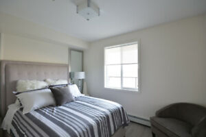DOWNTOWN FURNISHED APARTMENT- INCLUDES GYM, POOL, SAUNA