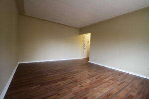 Wortley Village 1 Bedroom Hardwood Floors and Controlled Entry London Ontario image 3
