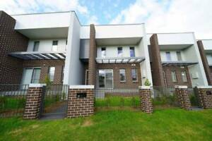 BRAND NEW Spacious Family House in Schofields