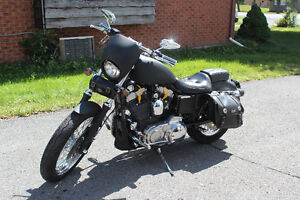One of a kind custom 883, stage 1 Cornwall Ontario image 3