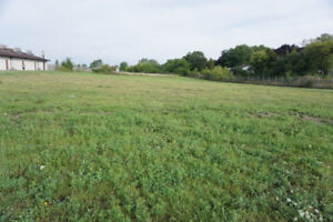 INVESTMENT OPPORTUNITY COMMERCIAL BUILDING LOT