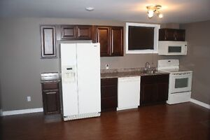 One Bedroom Basement Apartment in Paradise St. John's Newfoundland image 1