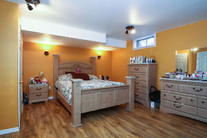 SPACIOUS BACKSPLIT IN EAST GALT - PERFECT MOVE UP HOME Cambridge Kitchener Area image 9