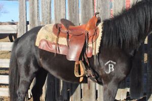 "14.5"" Youth or Ladies Western Saddle"