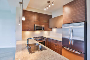 LUXURY LIVING APARTMENT (A217)