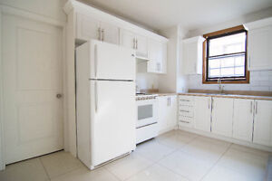 Lower triplex 3 1/2 100% renovated with parking space