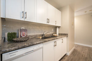 Great Apartment Less Than a Minute Walk to Fanshawe College