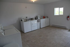 New & Furnished 1 bedroom apartment for rent in Estevan area Regina Regina Area image 9