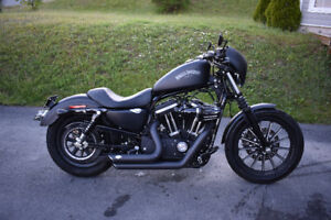 Sportster Iron 883 Best Price Around