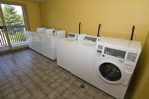 51 & 59 Campbell: Apartment for rent in Stratford Stratford Kitchener Area image 9