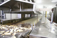 French Fry Processing Line Positions