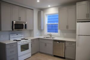Renovated Character 3 bedroom - South End/Universities/Hospitals