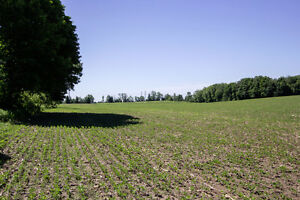 ** SAVE ** 48.8 Acres For Sale in Clarington!