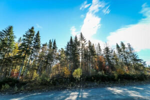 Vacant wooded lot on Braydon Road, Willow Grove N.B
