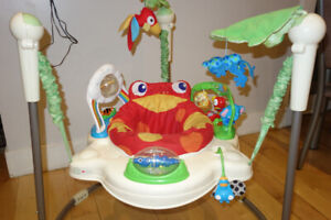 Fisher Price Baby Bouncer!