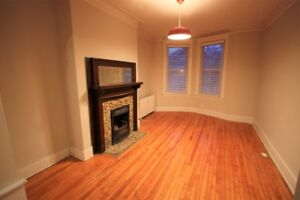 South End Renovated 3 bedroom - Downtown/Hospitals/Universities