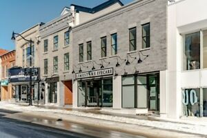 Luxurious 2 Bdrm, 2 Bath loft in the Heart of Downtown Kingston!